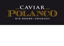 Caviar Polanco - Nos esturgeons nagent en pleine rivière en cages flottantes sur le Rio Negro et son lac, une merveille sauvage protégée et naturelle de l'Uruguay. Tout cela prendra sens lors de la dégustation après l'affinage de nos Caviars Polanco® : Sterlet, Sibérien & Osciètre. Venez goûter & en parler.