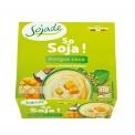 So Soja mangue coco - Dessert biologique au soja et fruits tropicaux. Source de protéines végétales. Élaboré avec du soja français.