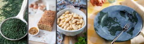Header_Nouvelles sources de protéines pour nourrir le monde