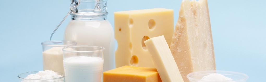 Produits laitiers - SIAL Paris